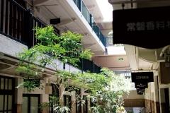 大阪淀屋橋/レトロ建築船場ビルの蘇生&屋上庭園緑化